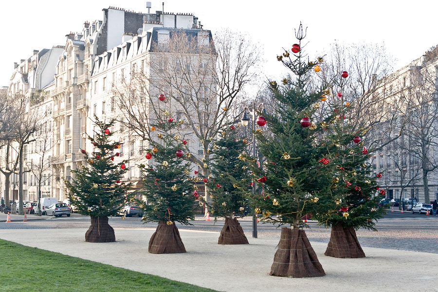 Streets in Paris before Christmas