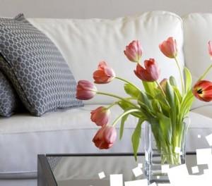 Rotterdam apartment rentals